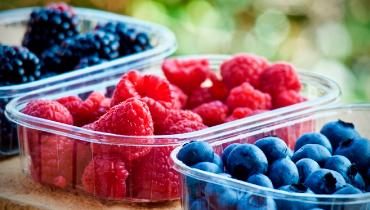 Conservación y transporte de frutas y hortalizas en cámaras ozonizadas