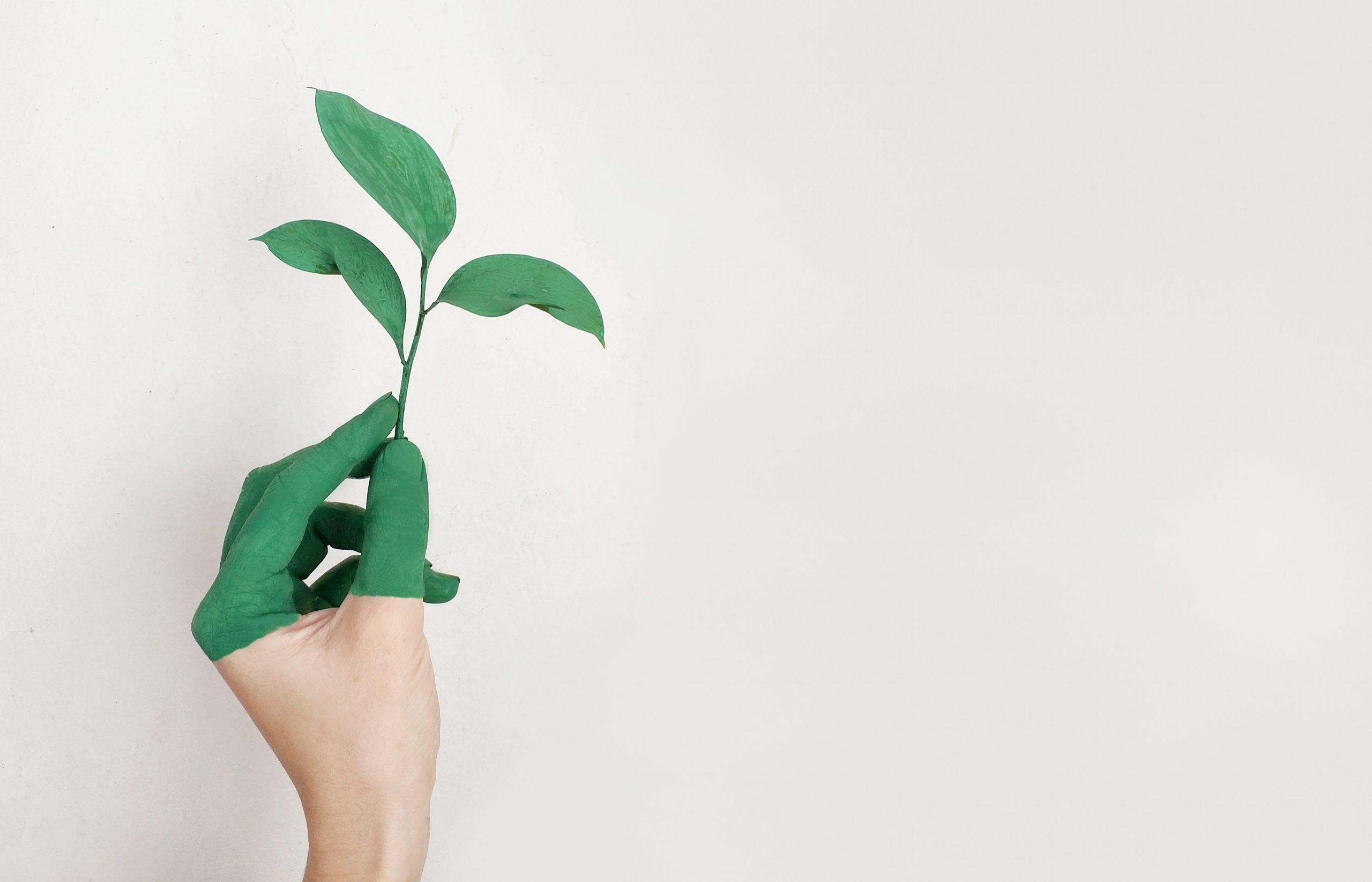 El Ozono en la Agricultura
